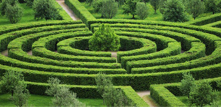 Le labyrinthe de la création et moi